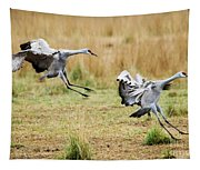 Stick The Landing Tapestry
