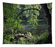 Still Water Tapestry