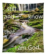Stillness Speaks Tapestry