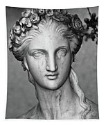 Stone Cold Beauty Tapestry