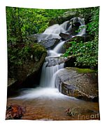 Stone Mountain Falls Tapestry