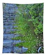 Stone Steps Tapestry