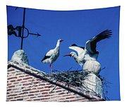Storks Of Segovia Tapestry