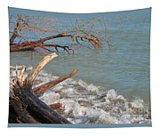 Storm Ravaged Tapestry