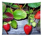 Strawberries Tapestry