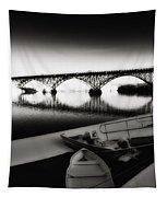 Strawberry Mansion Bridge In Winter Tapestry