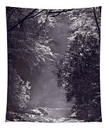 Stream Light B W Tapestry