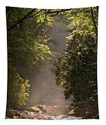 Stream Light Tapestry