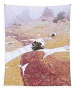 Stripe Tapestry