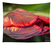 Striped Red Tulip Tapestry