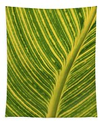 Stripey Leaf Tapestry