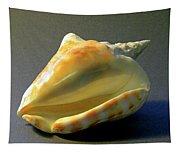 Strombus Inermis Seashell Tapestry