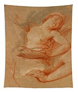 Study For Boreas Abducting Oreithyia Tapestry