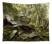 Study From Nature   Rocks And Trees Tapestry