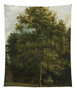 Study Of A Tree Tapestry