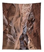 Subdued Colors Of Buckskin Tapestry