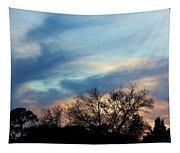 Subdued Sunset Tapestry