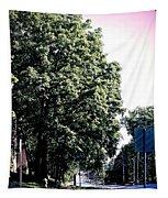 Suburban Tree Tapestry