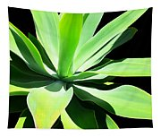 Succulent Agave Art By Sharon Cummings Tapestry