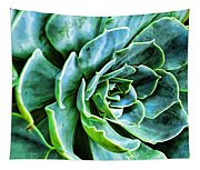 Succulents Tapestry