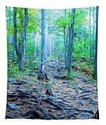 Sugarloaf Mountain Trail Tapestry
