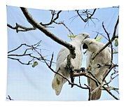 Sulphur Crested Cockatoos Tapestry