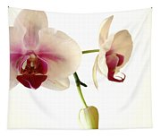 Summer Orchids Tapestry