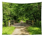 Summer Trail Scene 4 A Tapestry