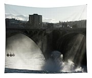 Sun And Water - Spokane Tapestry