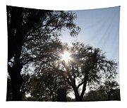 Sun Burst Tapestry