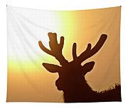 Sun Glaring Over A Bull Elk Tapestry