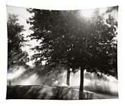 Sun Showers Tapestry