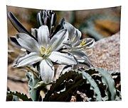 Sun Soaked Desert Lily Tapestry