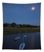 Sunfishes In Moonlight Tapestry