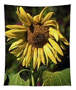 Sunflower Close Up Tapestry