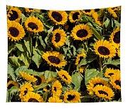 Sunflower Near Van Gogh Museum Tapestry
