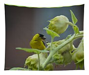 Sunflower Seed Tasting Tapestry