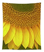 Sunflower Up Close Tapestry