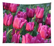 Sunlight On Pink Tulips Tapestry