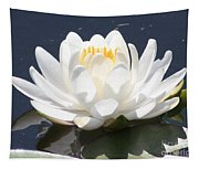 Sunlight On Water Lily Tapestry
