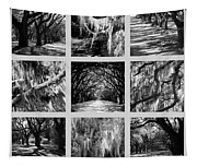 Sunlight Through Live Oaks Collage Tapestry
