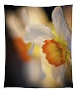 Sunlit Daffodils Tapestry