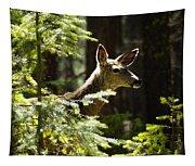 Sunlit Deer Friend Tapestry
