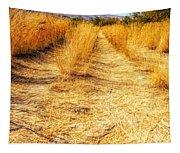 Sunlit Grasses Tapestry