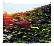 Sunlit Stones Tapestry