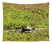 Sunning Turtle In Swamp Tapestry