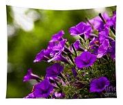 Sunny Petunias 1 Tapestry