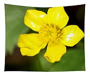 Sunny Yellow Cinquefoil Tapestry