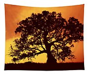 Sunrise Gum Tapestry