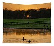 Sunrise On A Gettysburg Duck Pond Tapestry